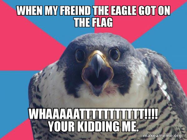 Millennial Falcon meme