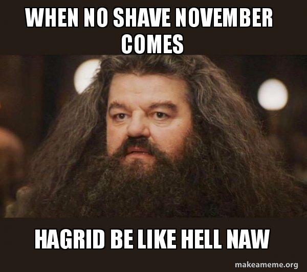 When No Shave November Comes Hagrid Be Like Hell Naw Hagrid I