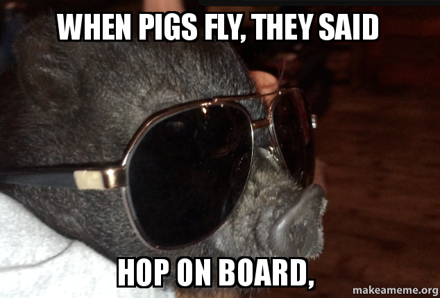 When Pigs Fly They Said Hop On Board Make A Meme