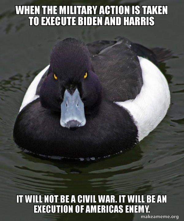 Revenge Duck ( Angry Advice Duck ) meme