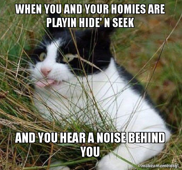 When you and your homies are playin hide' n seek and you