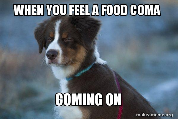 When You Feel A Food Coma Coming On Unsure Dog Make A Meme