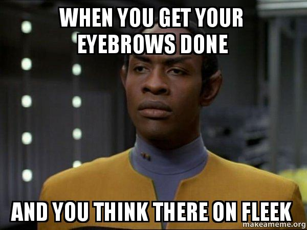 when you get 9holxo when you get your eyebrows done and you think there on fleek,Fleek Meme