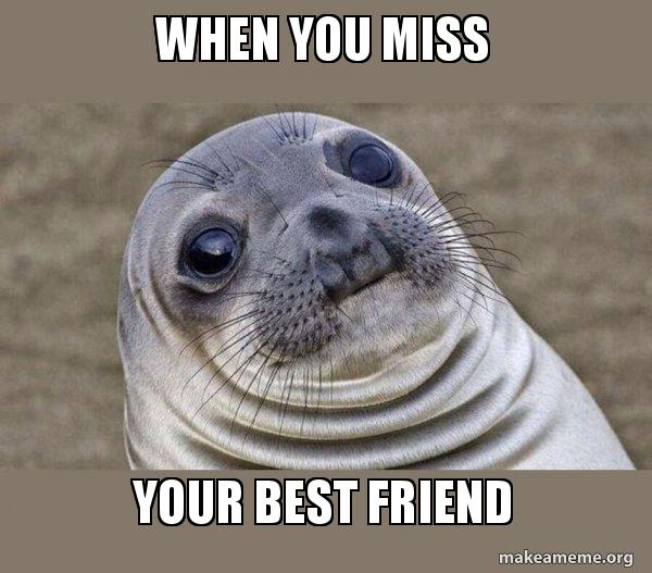 When You Miss Your Best Friend Squeamish Seal Make A Meme
