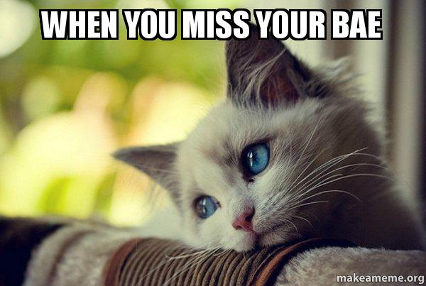 when you miss reqj0y when you miss your bae first world cat problems make a meme