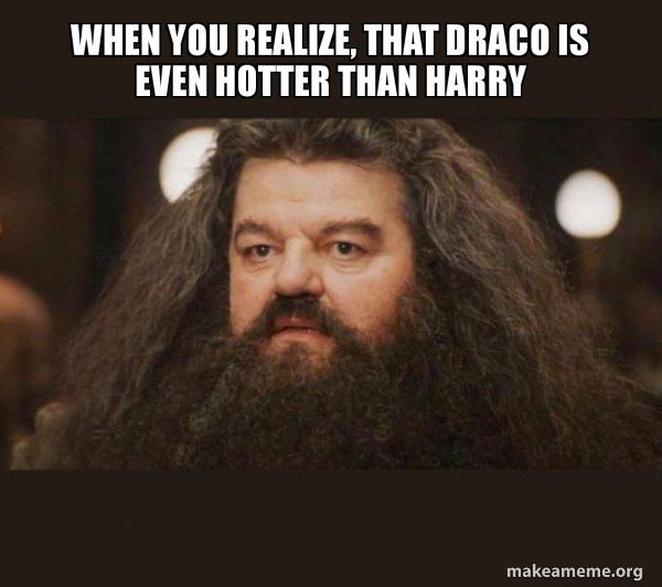 Hagrid - I should not have said that meme