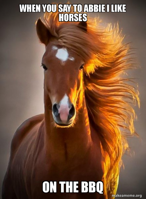 Ridiculously photogenic horse meme