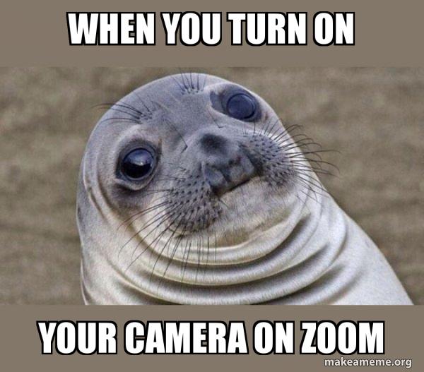 Squeamish Seal meme