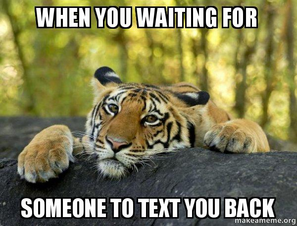 when you waiting qwo5gw when you waiting for someone to text you back confession tiger