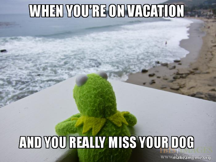 When Youre On Vacation