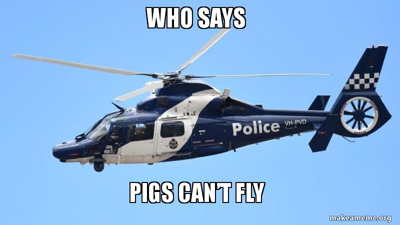 Who Says Pigs Cant Fly Make A Meme