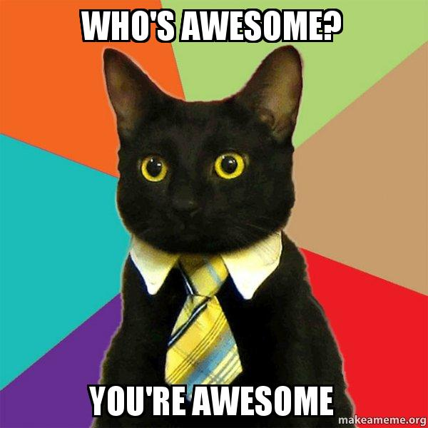 who s awesome you re awesome business cat make a meme