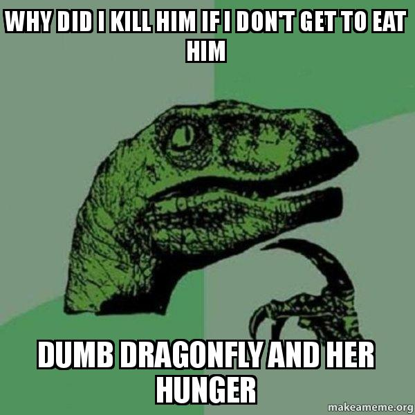 Why did i kill him if i don t get to eat him dumb dragonfly and her