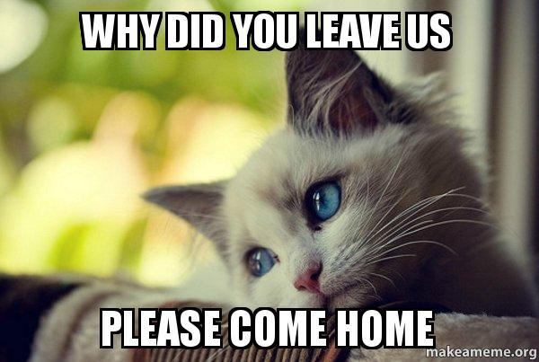 WHY DID YOU LEAVE US PLEASE COME HOME - First World Cat ...