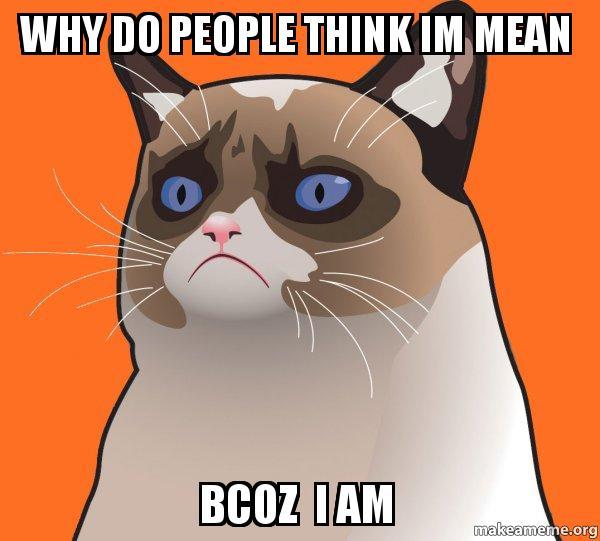 Cat Mean Meme