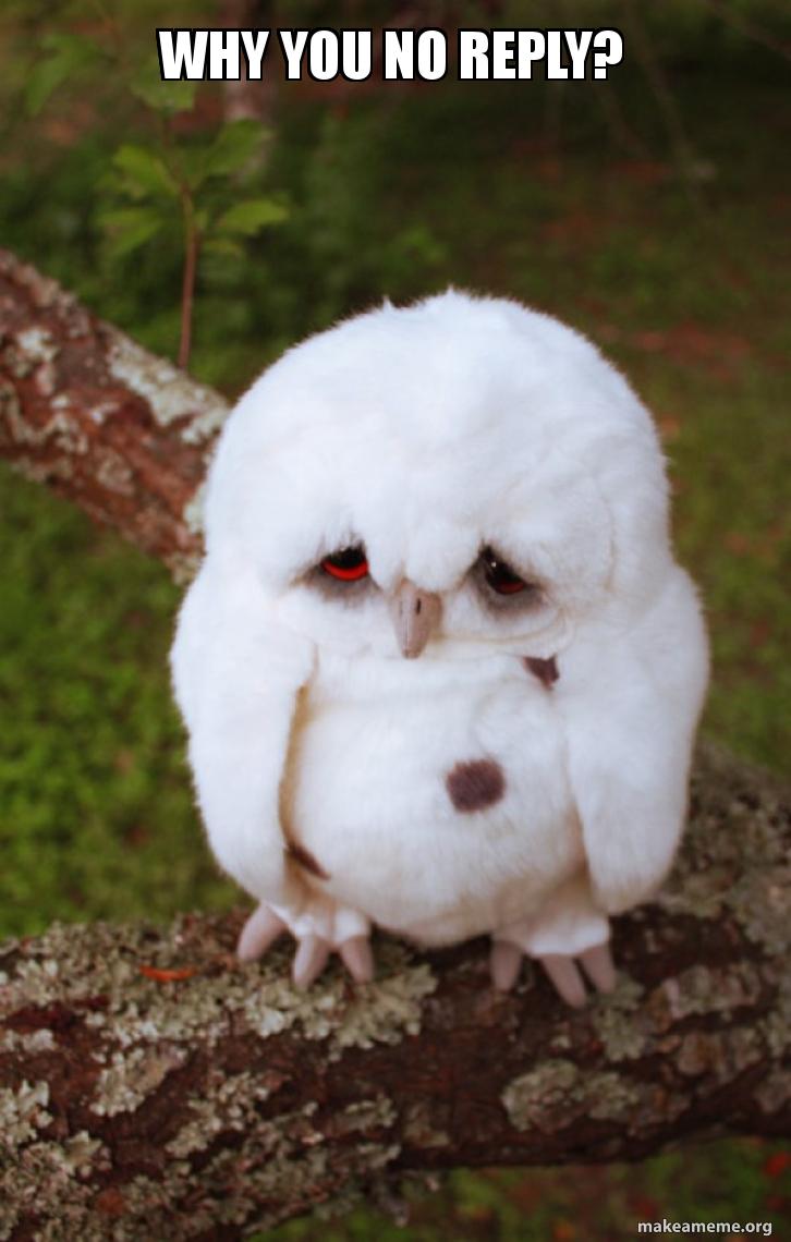 Why You No Reply Sad Owl Make A Meme