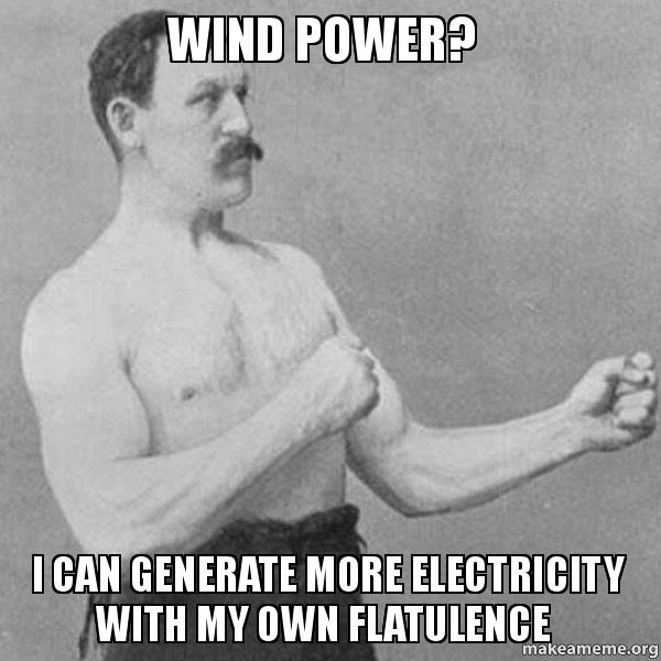 wind power ujtm5x wind power? i can generate more electricity with my own flatulence