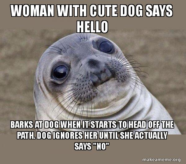 woman with cute woman with cute dog says hello barks at dog when it starts to head