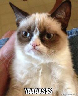 Yaaaasss Grumpy Cat Make A Meme