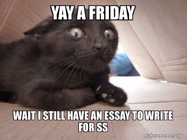 Yay A Friday Wait I Still Have An Essay To Write For Ss Schitzo Cat Make A Meme We bet that the first meme on the net was the one with a sneaky feline face! make a meme org