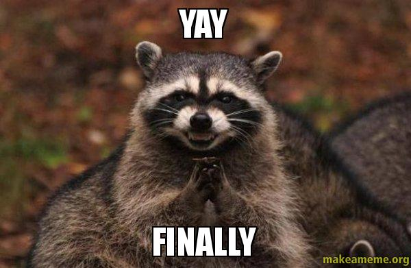 Yay Finally Evil Plotting Raccoon Make A Meme