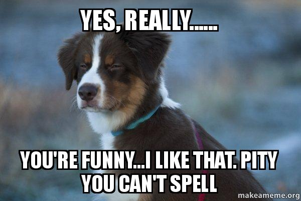 Yes, really..... You're funny...I like that. Pity you can't spell ... Yes Really Meme