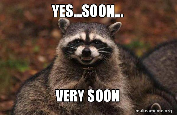 Raccoon rubbing its palms together with suspicious face, captioned 'soon'