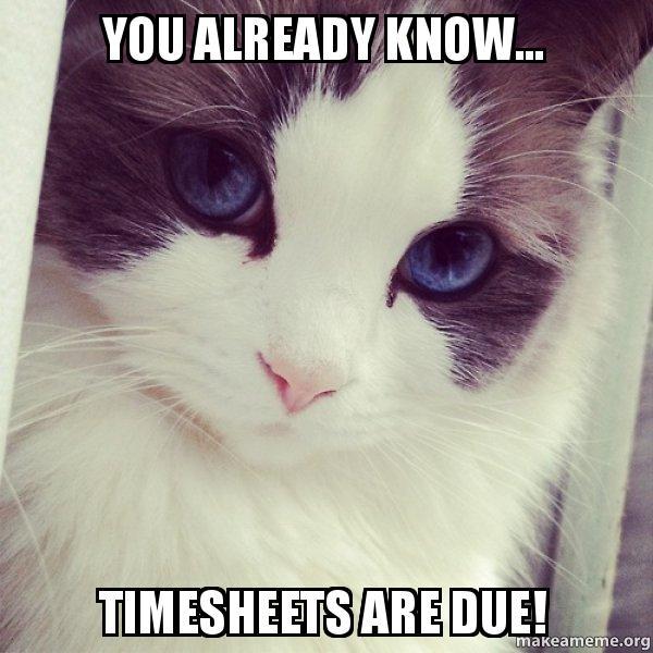 You Already Know... Timesheets Are Due! -