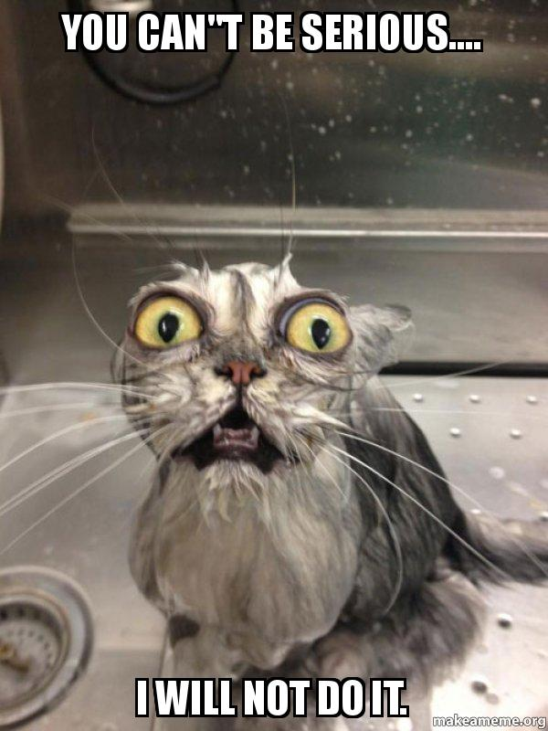 """You Can Do It Cat Meme YOU CAN""""T BE SERI..."""