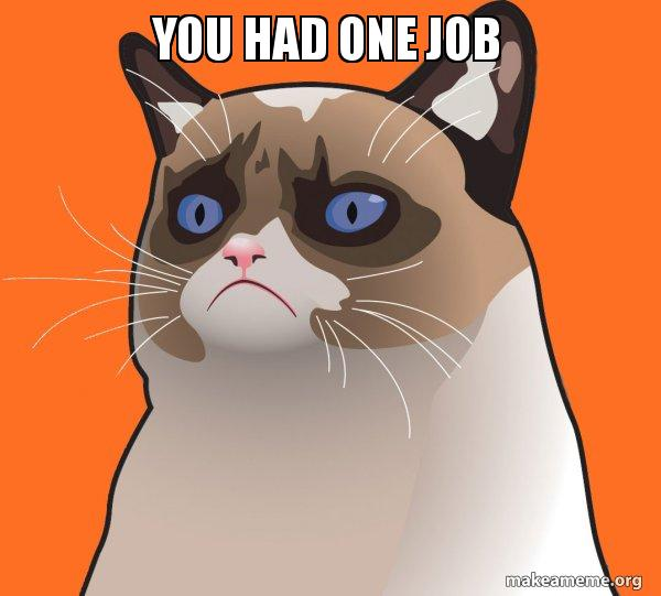 you had one job - Cartoon Grumpy Cat   Make a Meme
