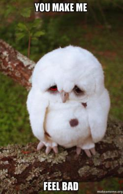 You Make Me Feel Bad Sad Owl Make A Meme
