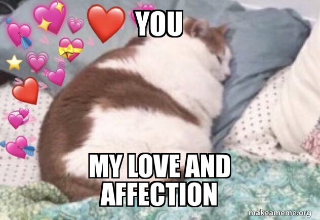 You My Love And Affection Love Make A Meme