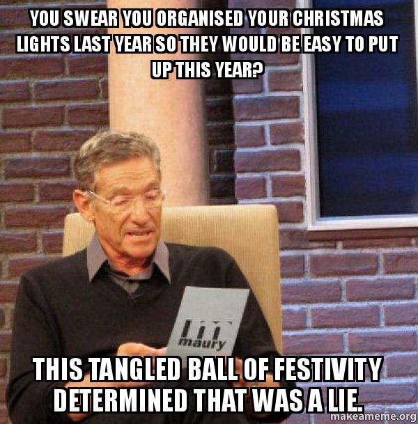 Christmas Light Meme.Tangled Christmas Lights Meme Thecannonball Org