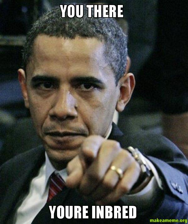 you there youre inbred - Angry Obama | Make a Meme