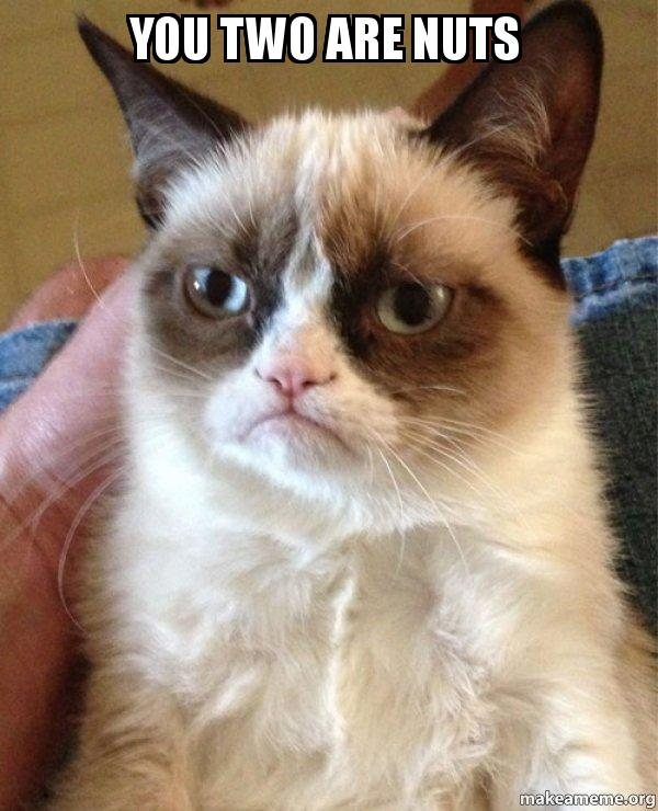 You two are nuts grumpy cat make a meme grumpy cat meme publicscrutiny Image collections