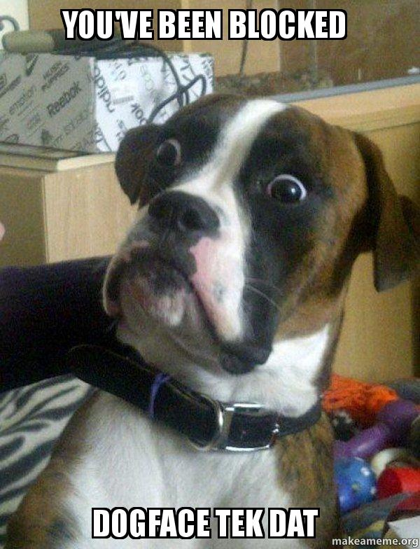 You Ve Been Blocked Dogface Tek Dat Skeptical Dog Make A Meme